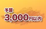 予算3000円以内